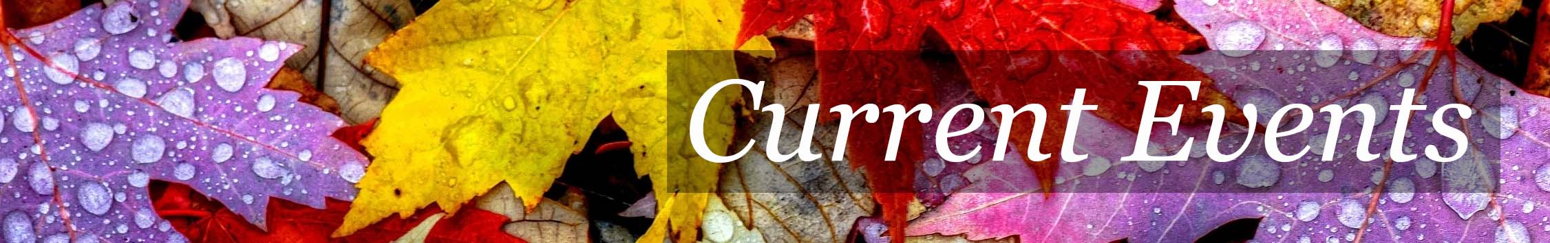 Current-Events-Banner Fall 01
